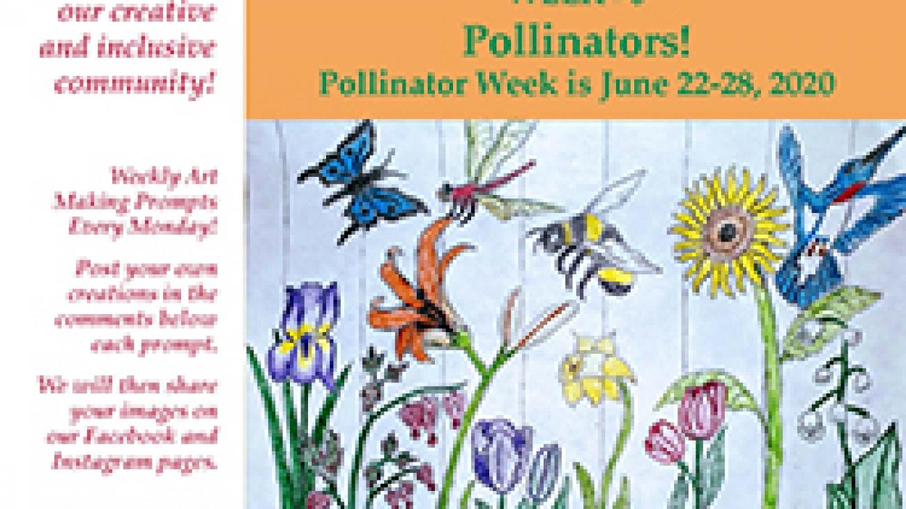 Pollinators! ValleyCAST Art Prompt Week 6